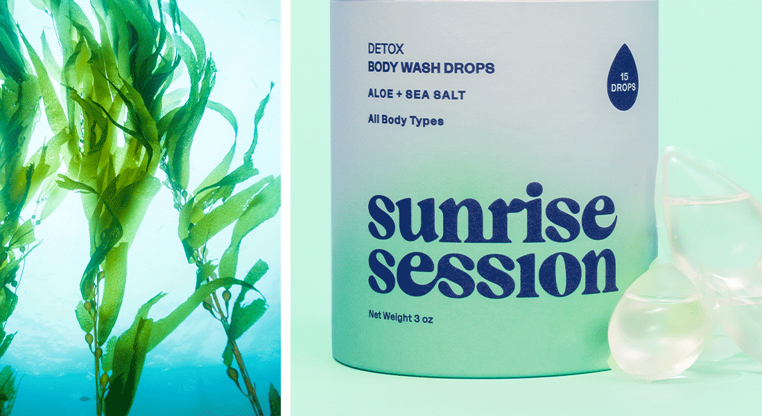 Sunrise Session Identity and Packaging | Bartlett Brands
